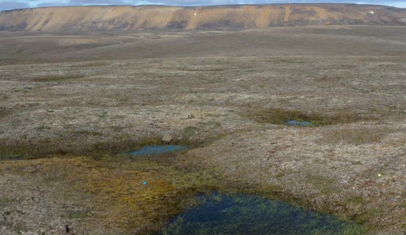 Scientists amazed as Canadian permafrost thaws 70 years early