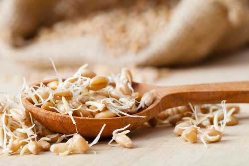 Are sprouted grains healthy?