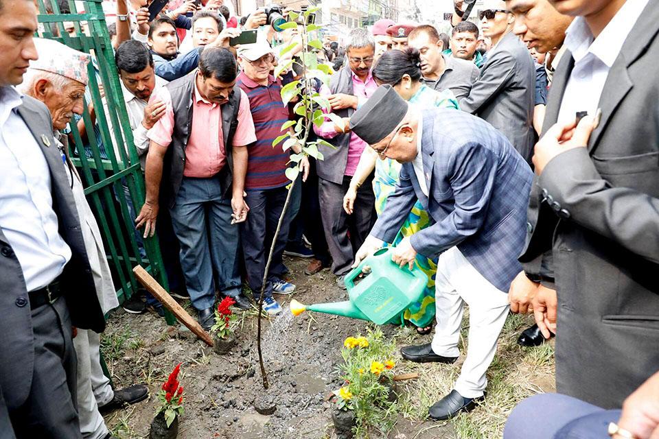 PM Oli initiates afforestation program at Kalanki-Koteshwor road section