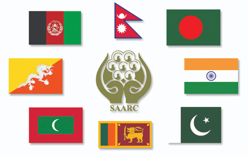 Regional politics should not affect SAARC, says Pakistani minister