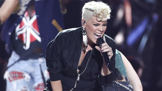 US singer Pink's tour crew crash land at Danish airport