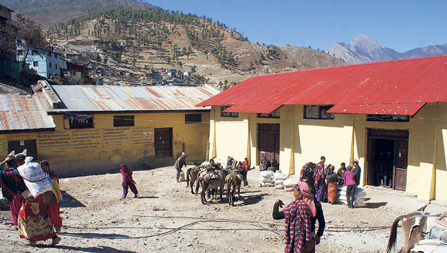 Food crisis grapples due to contractors' ignorance