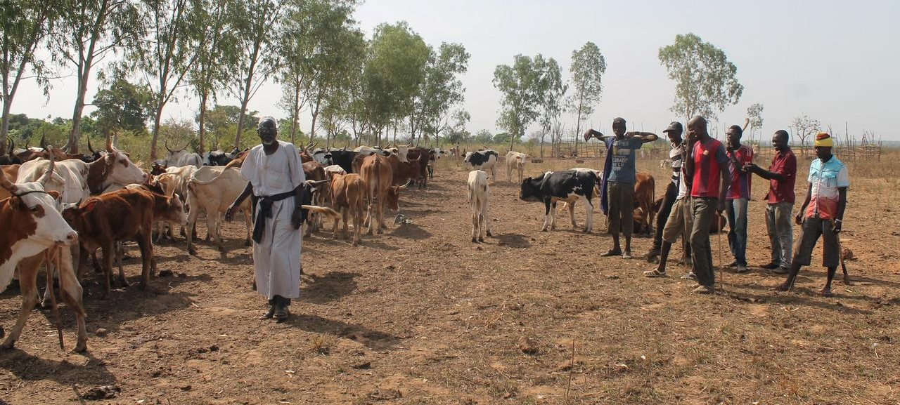 Gunmen kill at least 134 Fulani herders in central Mali's worst violence yet