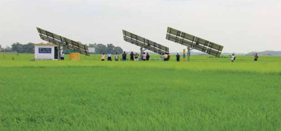 In rural Nepal, solar irrigation helps keep families together