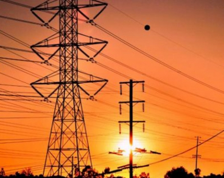 Kaligandaki transmission Project sees 45 per cent completion