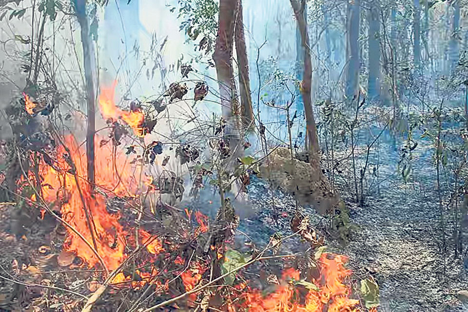 Four days on, wildfire continues to spread in Pyuthan forests