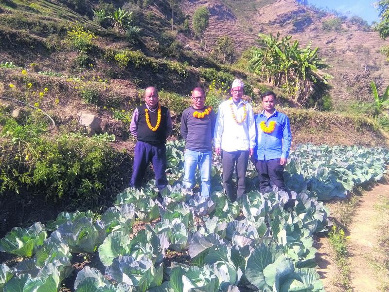 Ex-Maoist combatant now a successful vegetable farmer