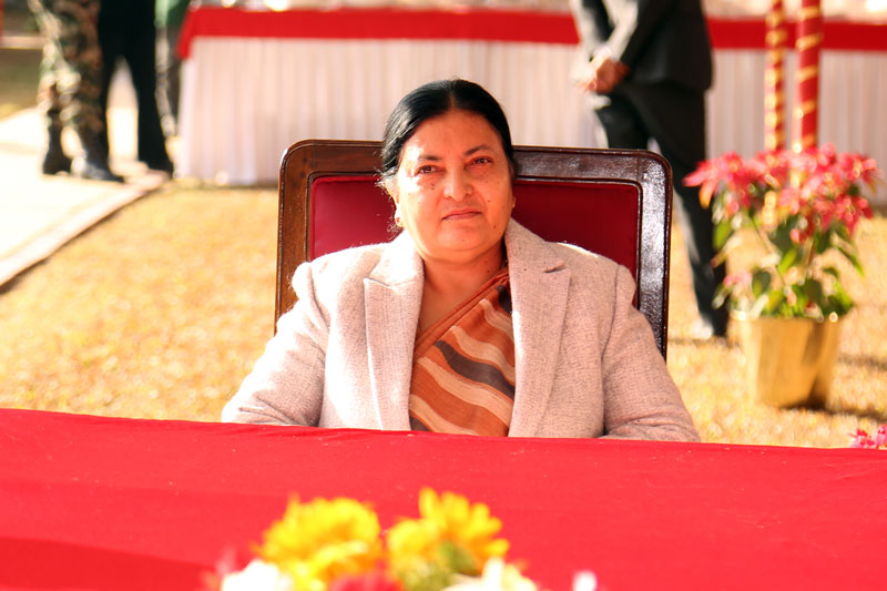 Prez Bhandari urges govt to talk with India to find solution to tarai floods