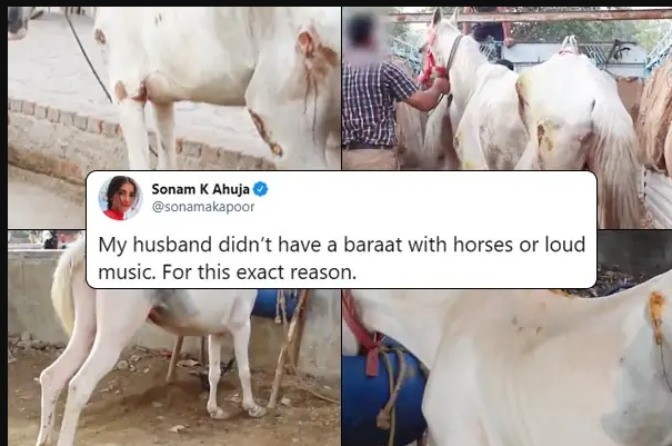 Sonam Kapoor shares why her husband 'didn't have a baraat with horses or loud music'