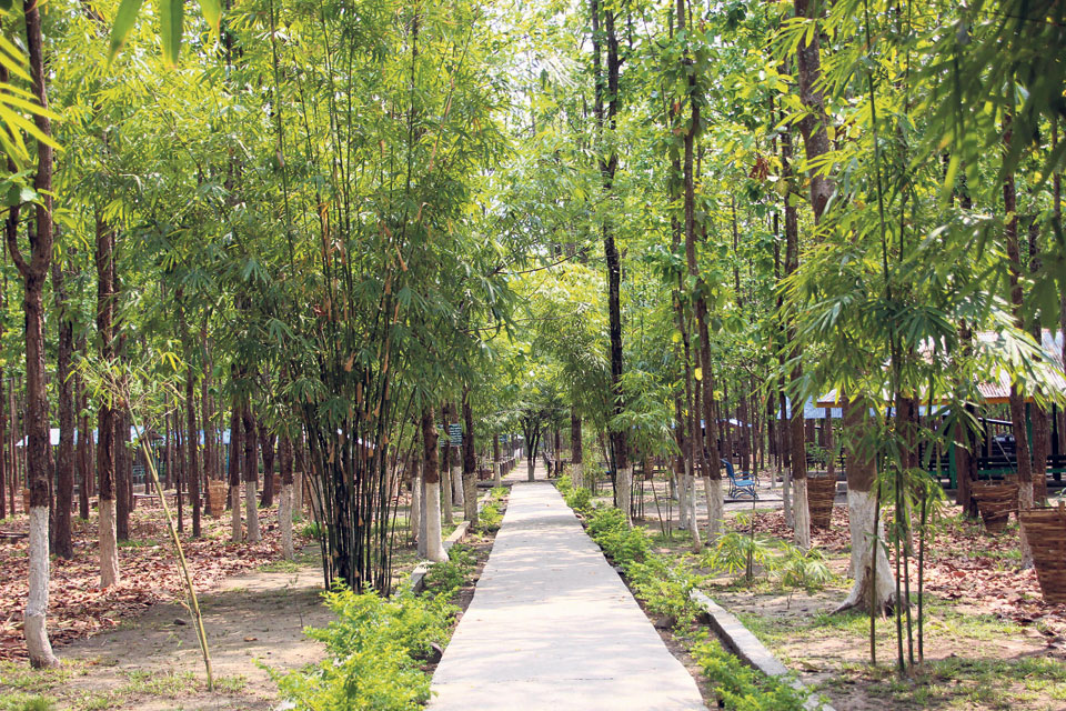 Eco-tourism thriving in Dharan