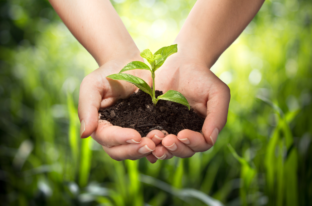Easy ways to live more eco-friendly lifestyle