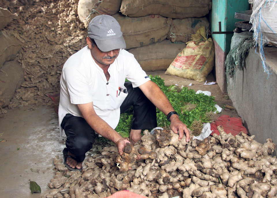 GST hits ginger export to India