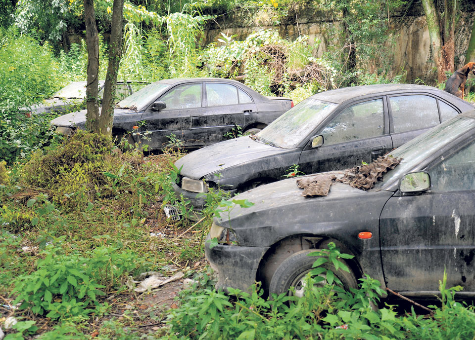 Luxury cars worth millions gather dust at government offices