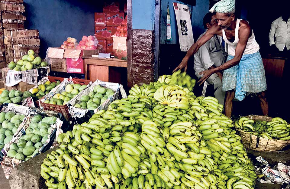 Indian, Chinese fruits dominate Nepali market
