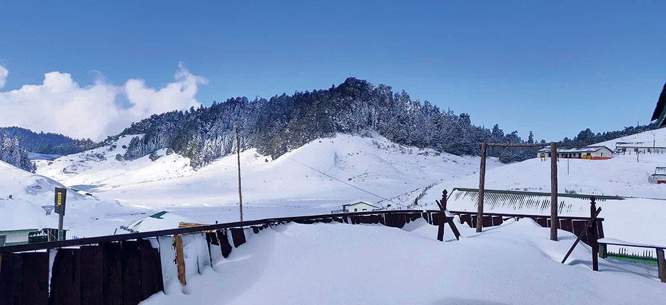 Heavy snowfall in Khaptad, wildlife at risk