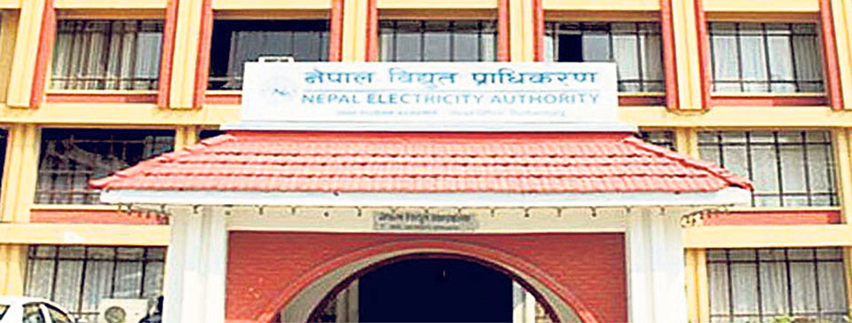 NEA saves Rs 10b by reducing electricity leakage