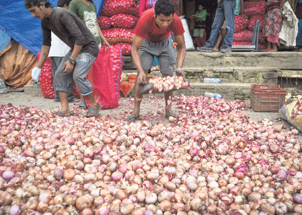Onion price soars to Rs 115 per kg - myRepublica - The New York