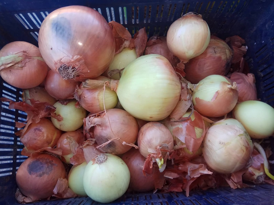 Onion being sold at Rs 300 per kilo in Jumla