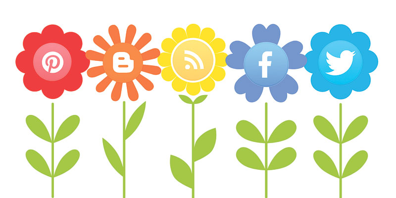 Got a social media following?  You can turn it to a business. Really