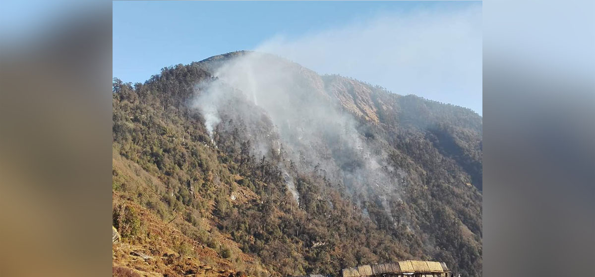 Forest fire in Pathivara Temple area still out of control