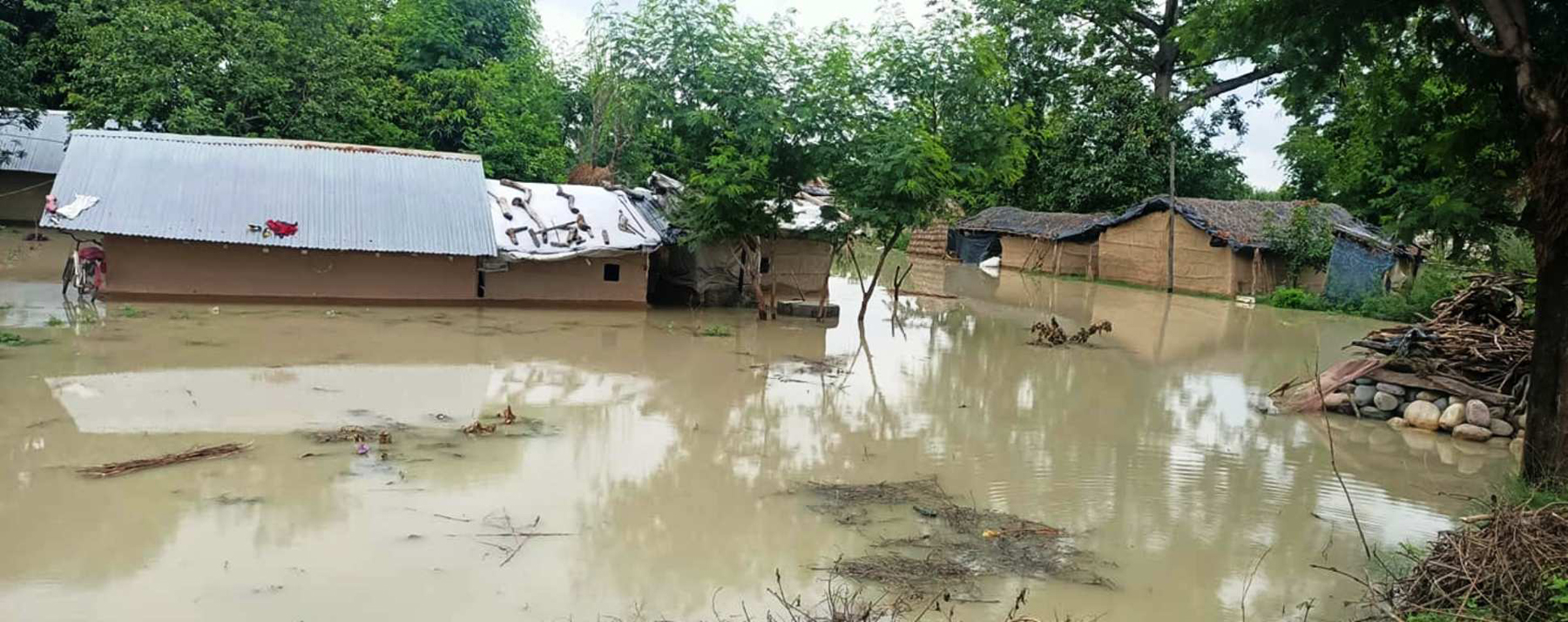 Flood survivors in Kanchanpur face hand-to-mouth problem