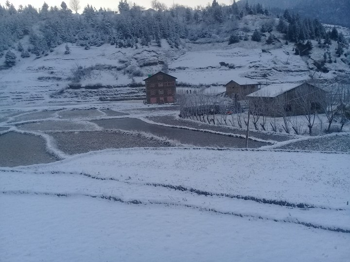 Snowfall affects normal life in hilly districts