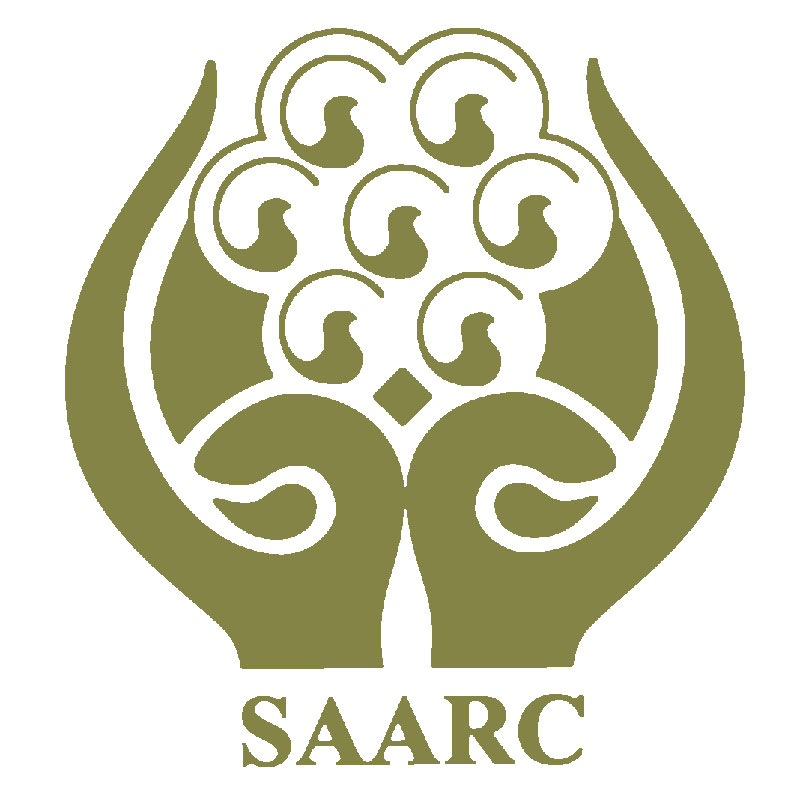 Nepal to initiate for holding 19th SAARC Summit: FM Mahat