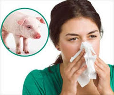Two die of swine flu in Jhapa