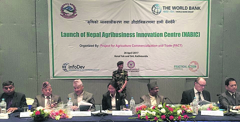 Govt forms agribusiness innovation center