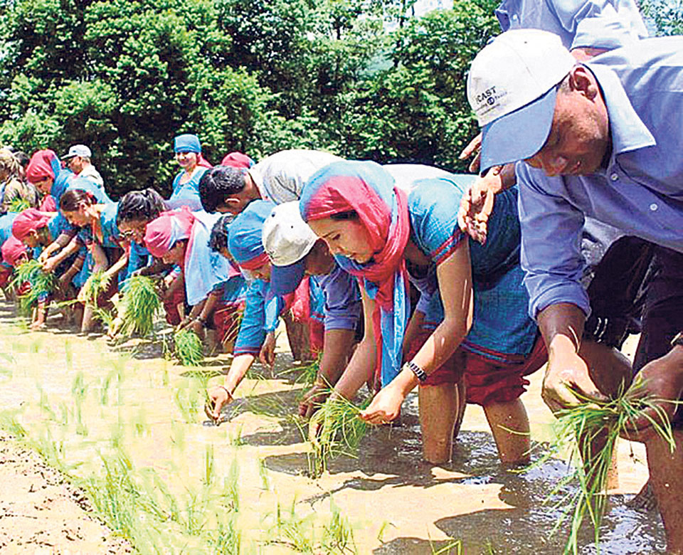 Re-arranging the response to climate change impacts in Nepali agriculture