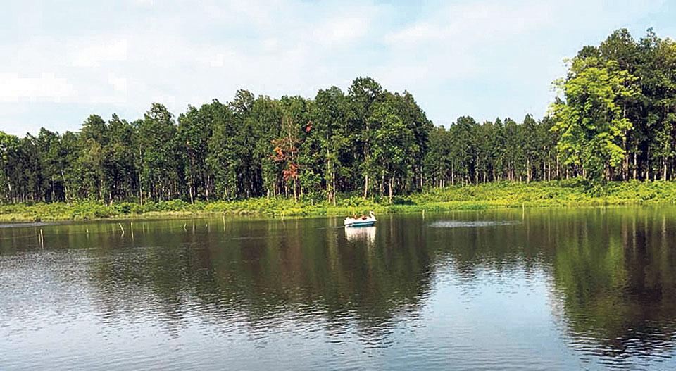 Developing Betana wetland in 20 years