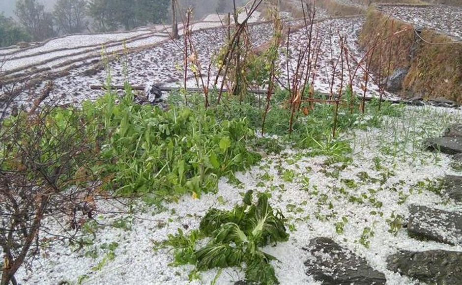 Earthquake victims suffer as snow, hailstone lash out northern Dhading
