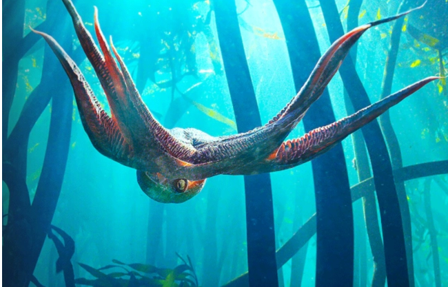 True human-octopus love story, 10 yrs in the making, is up for best documentary Oscar
