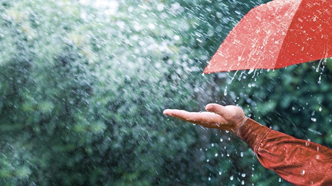 Flickering still in the rain