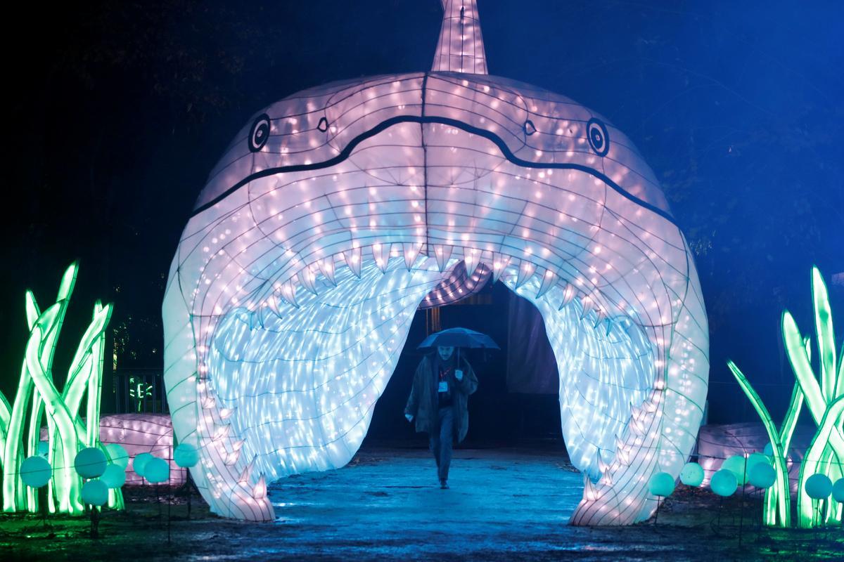 Sea animal lanterns shine in Paris
