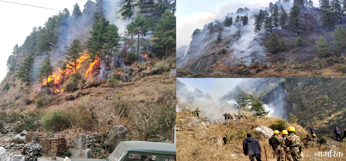 Wildfires reported in 60 forest areas in Kalikot