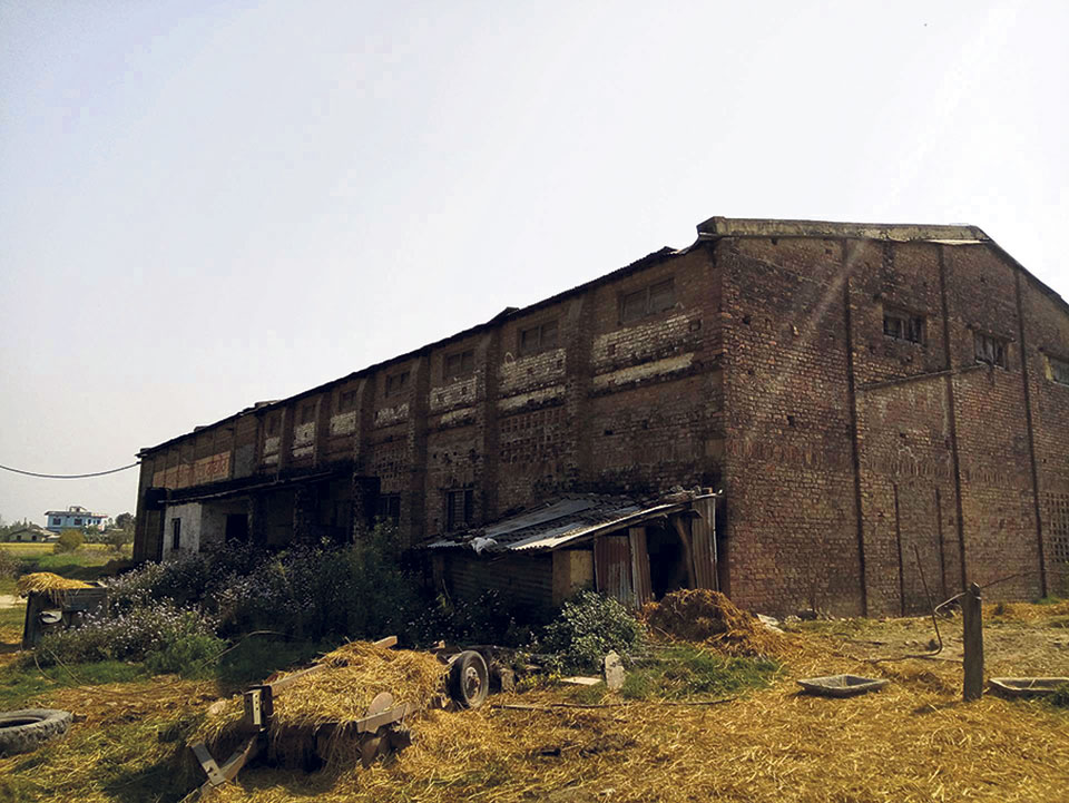 Large-scale rice mills of Kailali left in ruins