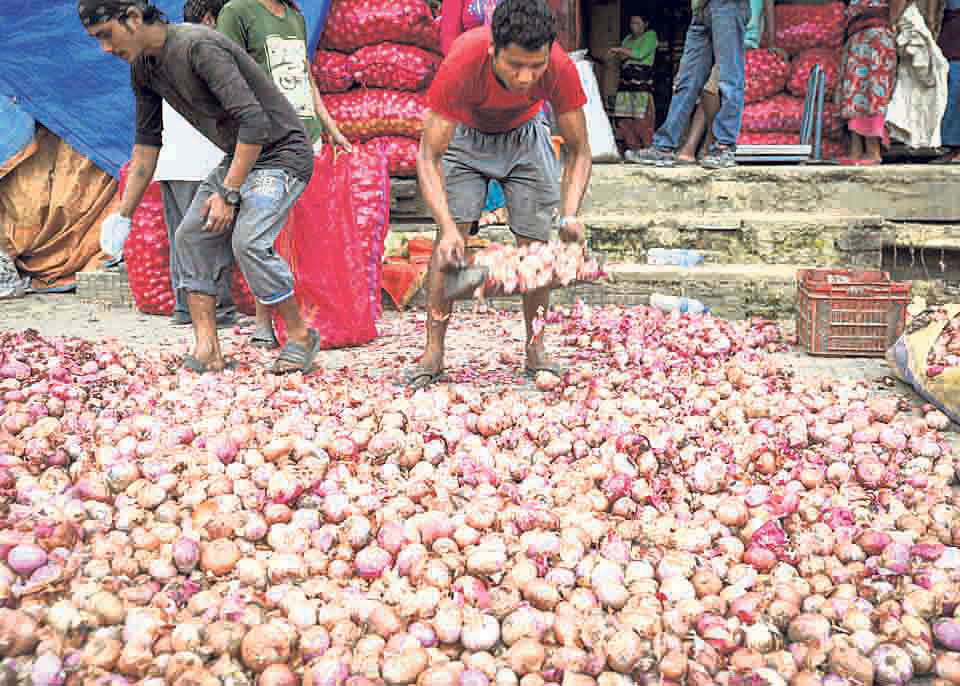 India's ban on onion export likely to hit hard Nepali consumers