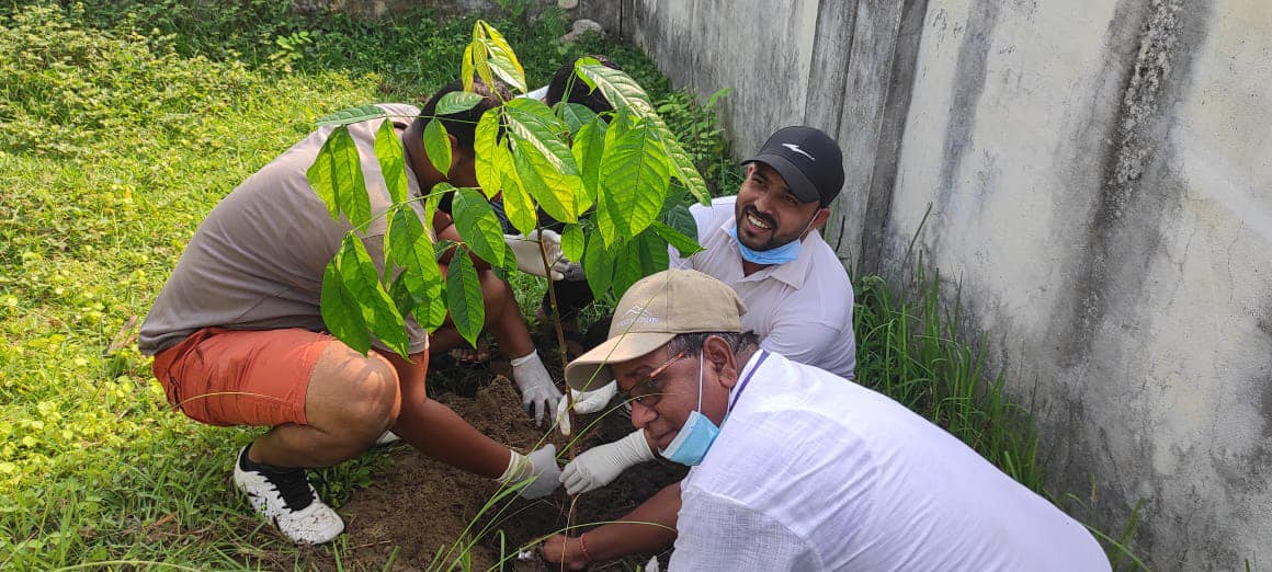 World Environment Day marked by planting saplings on Bagmati River banks
