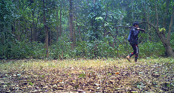Stopping poachers a challenge in Banke National Park