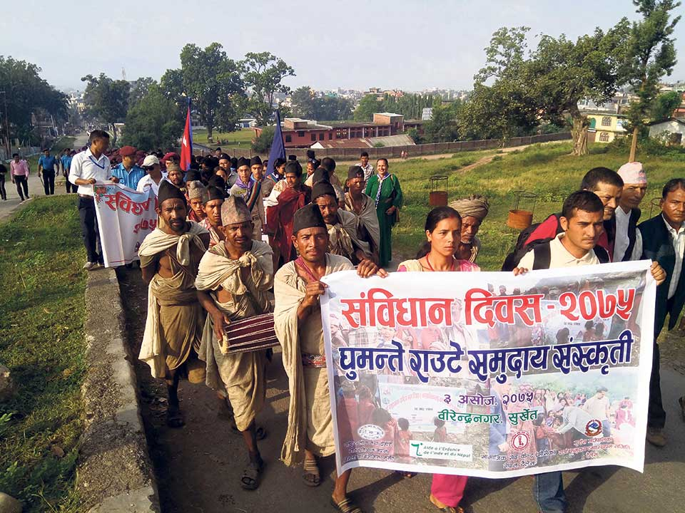 Rautes paid to participate in constitution day parade