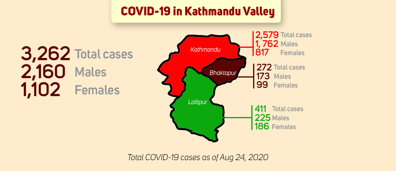 Kathmandu Valley reports 2,911 cases in last 24 days, 224 new cases today